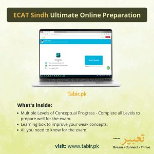 ecat-sindh-ultimate-online-preparation